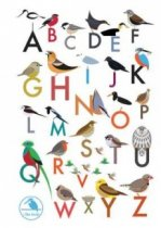 I Like Birds: Alphabet of Birds Address Book (Apr)