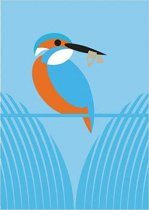 I Like Birds: River, Estuary & Shore Journals (Apr)