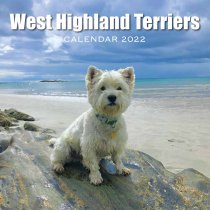 CL LO 2022 West Highland Terriers (2 for £6v)